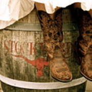 Cowgirl Boots Poster