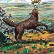 Coyote Joy Poster