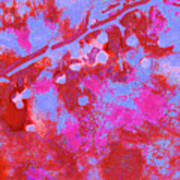 Crabapples Series #4 26 Poster
