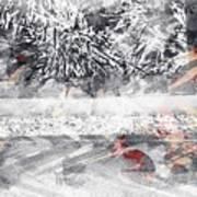 Cranberries In Winter Poster
