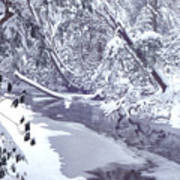Cranberry River Winter Heavy Snow Poster