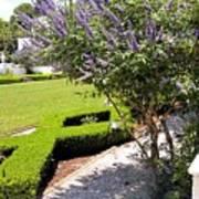 Crane Cottage Garden In Spring Poster