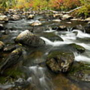 Crazy Woman Creek In Autumn Poster
