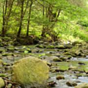 Creek 3 Poster