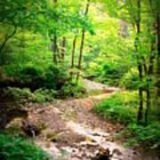 Creek Bend Poster