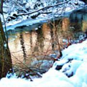 Creek In Bath Ohio Poster