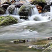 Creek With Rocks Spring Scene Poster