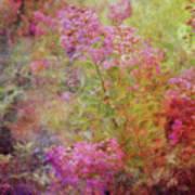 Crepe Garden 1776 Idp_2 Poster