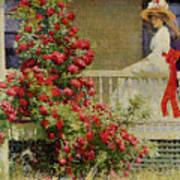 Crimson Rambler Poster by Philip Leslie Hale