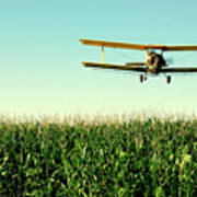 Crops Dusted Poster