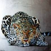 Crouching Leopard Poster
