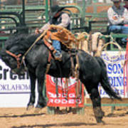 Crow Hopping Saddle Bronc Poster