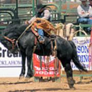 Crow Hopping Saddle Bronc Poster
