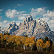 Crown For Tetons Poster