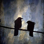 Crows And Sky Poster