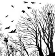 Crows Roost 2 - Black And White Poster