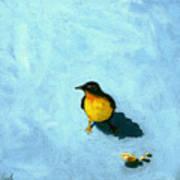 Crumbs -bird Painting Poster