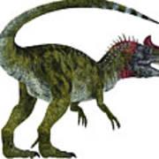 Cryolophosaurus Dinosaur Tail Poster