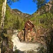 Crystal Mill Through The Trees Poster