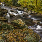 Cullasaja River In Autumn Poster