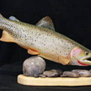 Cutthroat Trout On The Rocks Poster by Eric Knowlton