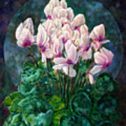 Cyclamen In Orbit Poster