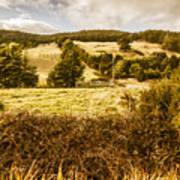 Cygnet Rustic Farming Fields Poster