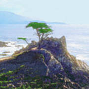 Cypress At Carmel Poster