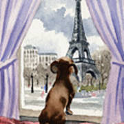 Dachshund In Paris Poster