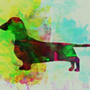 Dachshund Watercolor Poster by Naxart Studio
