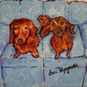 Dachshunds And Netflix  Poster