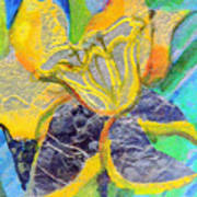 Daffodil Abstract Poster