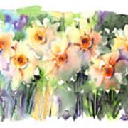 Daffodil's Dancing Poster