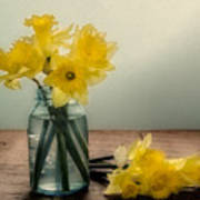 Daffodils In A Blue Jar Poster