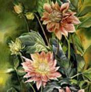 Dahlias In Autumn Poster