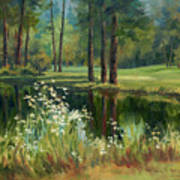 Daisies On The Golf Course Poster
