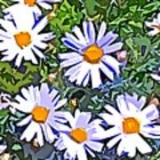 Daisy Flower Garden Abstract Poster