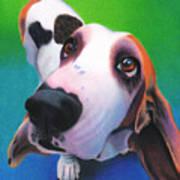 Basset Hound - Daisy Poster
