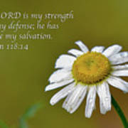 My Strength Poster
