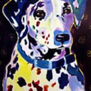 Dalmatian - Dottie Poster by Alicia VanNoy Call