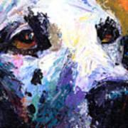 Dalmatian Dog Painting Poster