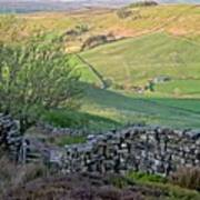 Danby Dale Countryside Poster