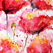 Dancing Poppies Galore Watercolor Poster