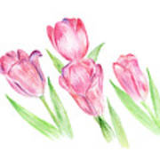Dancing Tulips Poster