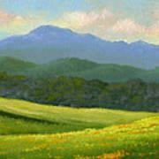 Dandelion Meadows Poster