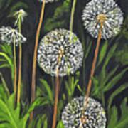 Dandelion Puff Poster