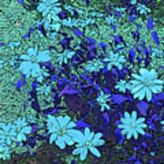 Dandy Digital Daisies In Blue Poster