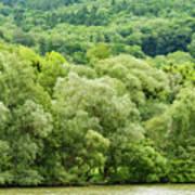 Danube Green Poster