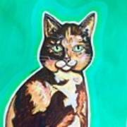 Daphne The Calico Cat Poster
