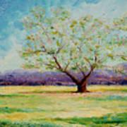 Dapples Apple Tree II Poster